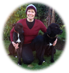 Joan Young of Whitehead Walkies with her two dogs